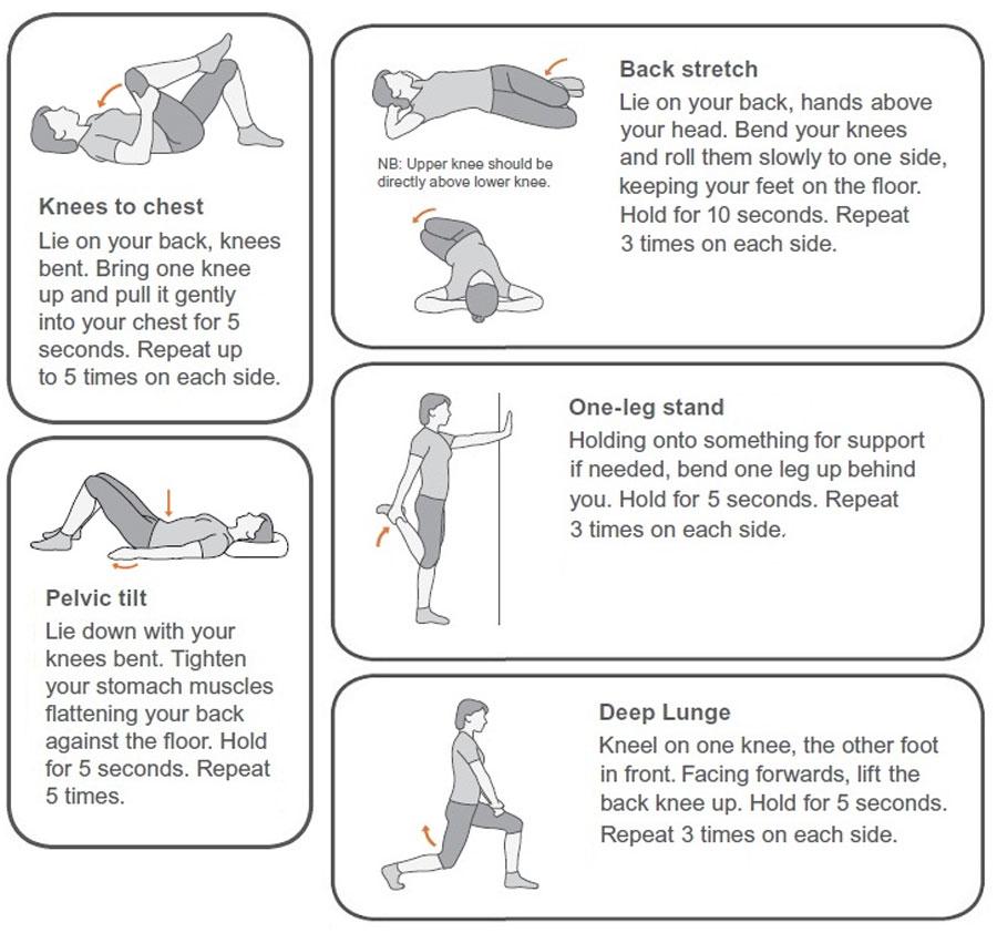 Exercises-to-manage-back-pain